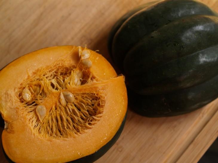 acorn5.jpg